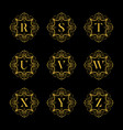 set luxury alphabet on the black background vector image