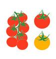 tomato cherry vector image vector image