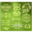 vintage badges for eco products vector image