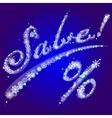 winter inscription Sale vector image vector image