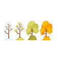 winter spring summer and autumn seasons concept vector image
