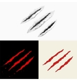 Set of claw scratches vector image