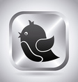 bird communication vector image