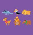 cute animals set deer toucan wolf lion deer vector image vector image
