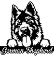 german shepherd peeking dog - head isolated vector image vector image