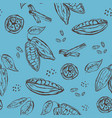 pattern with hand drawn elements cocoa pods beans vector image vector image