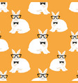 rabbits in glasses on an orange background vector image