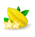 yummy ripe starfruits with leaves isolated on vector image vector image