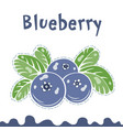 blueberry berries images vector image vector image
