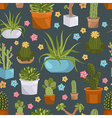 Cactuses and succulents seamless pattern vector image
