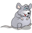 fatty mouse vector image vector image