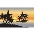 Palm in beach at sunset vector image vector image