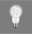 realistic detailed light bulb on a transparent vector image vector image