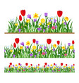 seamless flowers border vector image