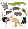 set of australian animals and birds wild vector image vector image