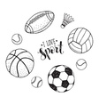 sport balls collection vector image