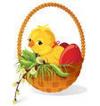 easter card chicken and eggs in basket with sprig vector image