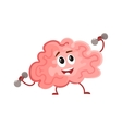 Funny concentration brain training with dumbbells vector image vector image