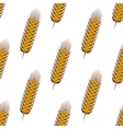 Golden spikelets of wheat seamless pattern vector image