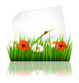 Nature background with grass and a sheet of paper vector image vector image