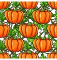 Pumpkin seamless pattern drawing Isolated vector image vector image