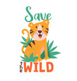 save wild poster with tiger vector image vector image