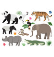 set of cute wild animals and birds icon decor for vector image
