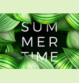 summer time poster green leaves abstract vector image