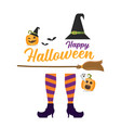 witch legs broom and hat vector image