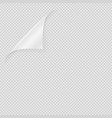 blank paper sheet corner curled on transparent vector image vector image