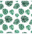 exotic tropical green monstera leaves pattern vector image vector image