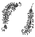 floral ornament black vector image