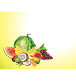 fruits horizontal background vector image vector image