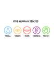 icon set five human senses vector image