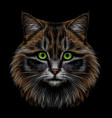 realistic colorful hand-drawn portrait a cat vector image vector image