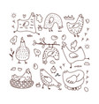 set doodle with hens vector image vector image