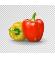 set of two peppers yellow red pepper vector image vector image