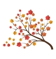 tree autumn dry leaves vector image