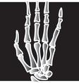 Xray Finger bones vector image vector image