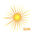 yellow sun burst icon vector image