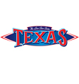 Texas The Lone Star State vector image