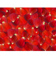 background of naturalistic rose petals vector image vector image