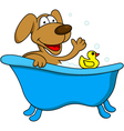 dog bathing vector image vector image