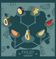 fruit color isometric concept icons vector image vector image