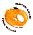 Hand drawn watercolor and pencil orange vector image