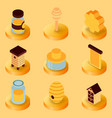honey flat isometric icons vector image