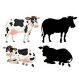 set of cow character vector image vector image