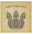 sweet pineapple vintage background vector image vector image