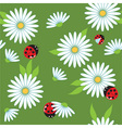 daisies and ladybugs vector image