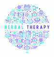 herbal therapy concept in circle vector image